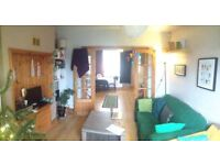 Double Room to Rent, in Friendly Relaxed House.