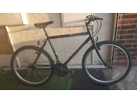 Ammaco 5000 Mountain Bike. 21 speed. 26 inch wheels (Suit: 16 yrs to Adult).