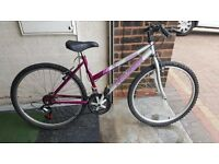 Falcon Jubilee Ladies Mountain Bike. 18 speed. 26 inch wheels (Suit: 16 yrs to Adult).
