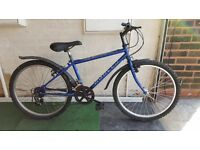 Apollo Vertigo Teenagers Bike. 10 speed. 24 inch wheels (Suit: 9 yrs to 12 yrs).