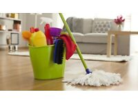 'Clean and Crisp' Domestic Maid Service
