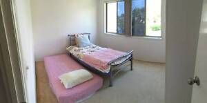 Room For Rent Biggera Waters Gold Coast City Preview