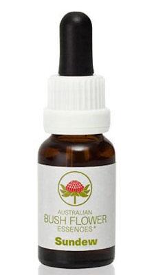 Sundew - Australian Bush Flower Essence Stock Bottle Remedy - 15mL