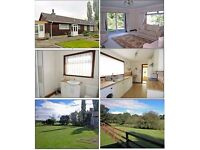 *** Lovely 4 bedroom bungalow available for rent***