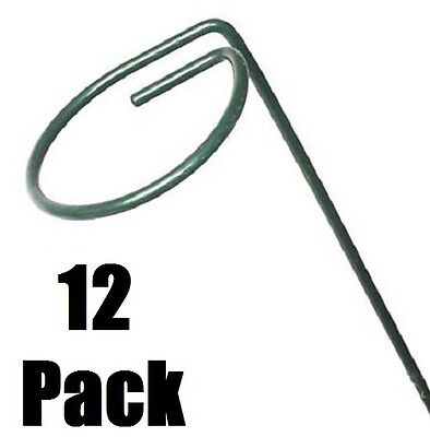 "12 Ea Panacea 89343 4"" X 48"" Green Single Loop Metal Plan..."