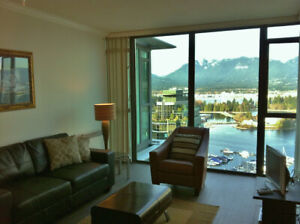 PRICELESS VIEWS  - 1 BR + Den Apartment for rent - NOT FURNISHED