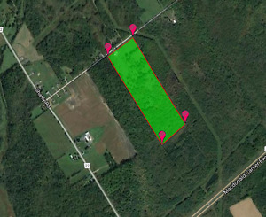 Pasture land - for rent