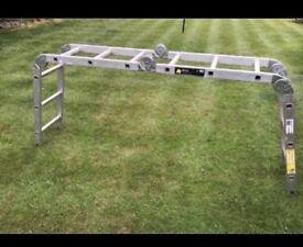 Multiple purpose ladder