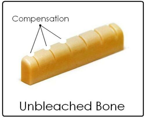 AxeMasters COMPENSATED UNBLEACHED BONE NUT made for EPIPHONE Guitars