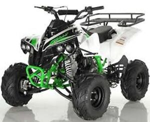 Sport Model 125 E Youth ATV On Sale Limited Time Offer $699.00