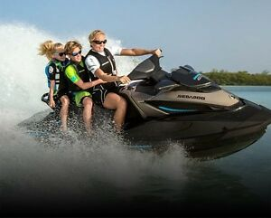 Looking to purchase sea doo for the summer