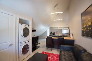 1 Bedroom University Suite