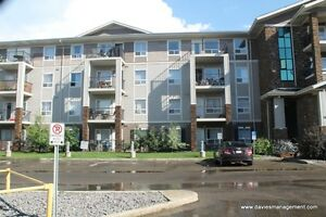Great Two-Bedroom Condo! - Park Place South Terwillegar