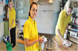 Regular,Domestic Cleaner,Deep,Spotless,End of Tenancy Cleaning,Cleaning Lady,House Cleaner,Cleaner