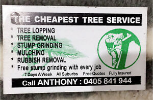 The Cheapest Tree Service Hunters Hill Hunters Hill Area Preview