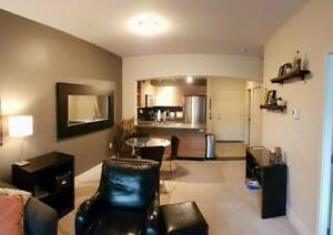 2 BR, 2 BA in Salus Apartments for May 1st