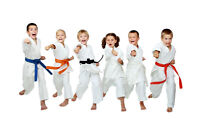 Children's Karate Classes are Starting Soon.