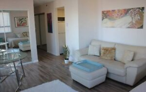 Great downtown condo, furnished and close to beach (YALETOWN)