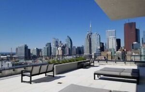 Downtown 1 Bedroom Condo For Rent