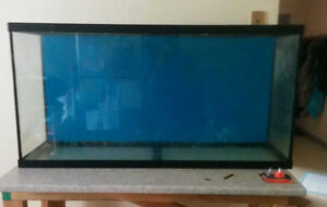 55 gal tank with sump stand LEDs and more .