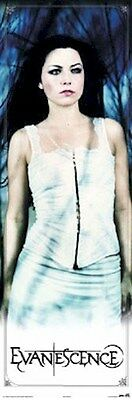 EVANESCENCE ~ AMY LEE SPOOKY ~ 21x62 DOOR SIZE MUSIC POSTER NEW/ROLLED!