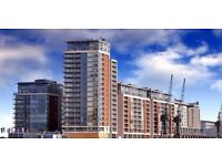 Stunning 1B flat, fully fitted kitchen, furnished available in Capital East, Docklands, London LL4