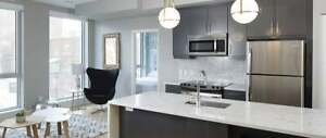 Downtown Ottawa Affordable Luxury Rentals! (Available Aug 1st)