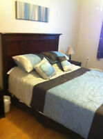 Pet Friendly One Bedroom Apartment - 5 Mins from the Beach!!