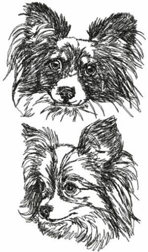 Papillon Dog Breed Personalize Embroidered Fleece Stadium Blanket Gift