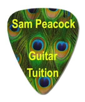 Sam Peacock Music Tuition - Guitar Teacher / Guitar Lessons Valentine Lake Macquarie Area Preview