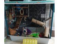 Ferplast ferret plus rat cage