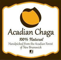 1 pound of Acadian Chaga for sale