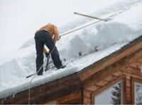 #1 ROOFTOP SNOW REMOVAL & LEAK REPAIRS !!!