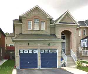 Basement Apartment For Rent Brampton