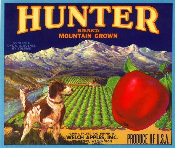 Wenatchee Washington Hunter Spaniel Dog Apple Fruit Crate Label Art Print