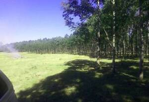 65 ACRES - SUIT LIFESTYLE, CATTLE, HORSES - CREEK BOUNDARY Tabulam Tenterfield Area Preview