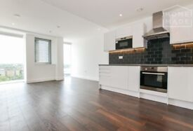Brand New 2 Bedroom with Amazing Views (1 minute from Colliers Wood tube)