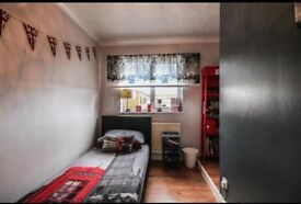 Modern single and double room £460