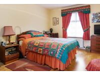 BEDROOM SET CURTAINS & TIE BACKS, MATCHING DUVET COVER, SHEETS, PILLOW CASES AND RUG ELEPHANT