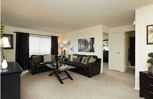 Updated Two Bedroom at Huron/Highbury with a Pool! Avilable Feb. London Ontario image 4