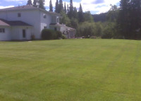 Tailored Lawns