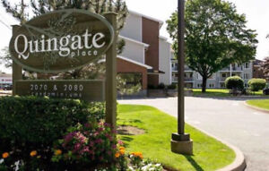 Quingate Place Condo - wanted to BUY