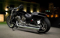 ....WTB ...... looking for Harley Davidson V-Rod Muscle......