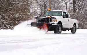Snow removal and fall clean up deals Oakville / Halton Region Toronto (GTA) image 2