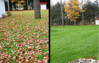 FALL CLEAN UP - BOOK YOUR FALL CLEAN UP !!