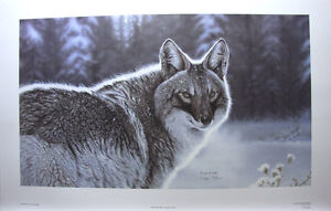 Randy Fehr The Newcomer Limited edition print SIGNED / Numbered