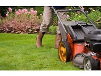 Local Gardener For Work