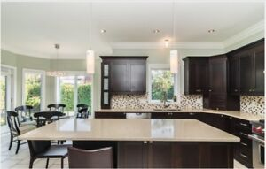 kitchen  cabinets & home appliance