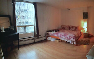 Bright Bachelor Apartment at Queen and Morris