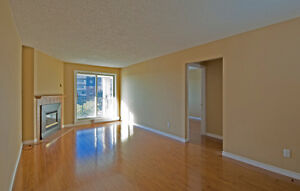 Move in before the holidays! Renovated 3 bedroom condo London Ontario image 8